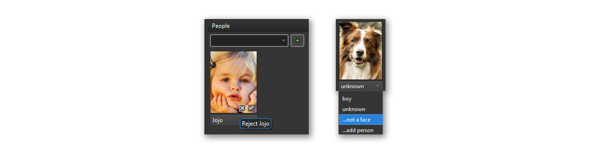 Face detection can also find pet faces